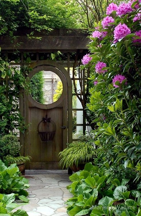 Looks similar to one of my rhododendrons but about 3 feet taller. I love the garden gate.