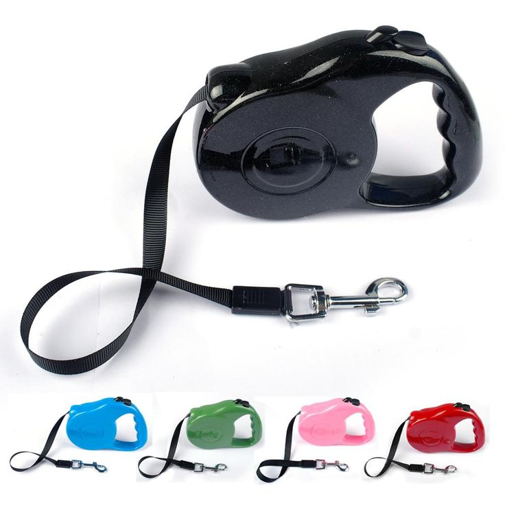 3M 5M Retractable Dog Leads Extending Puppy Walking nylon Leash 5 Colors     Tag a friend who would love this!     FREE Shipping Worldwide     Get it here ---> http://sheebapets.com/3m-5m-retractable-dog-leads-extending-puppy-walking-nylon-leash-5-colorss/
