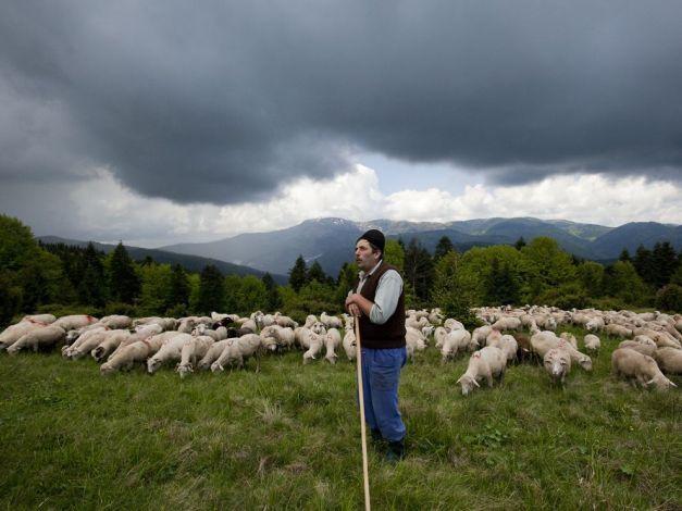 Străinii sunt complet miraţi de România: Transilvania, tărâmul de basm, aproape medieval   Turism Istoric