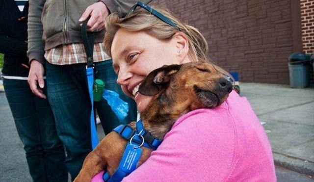Pet Sitting: 20 Σημάδια που το σκυλί σας είναι ευτυχισμένο
