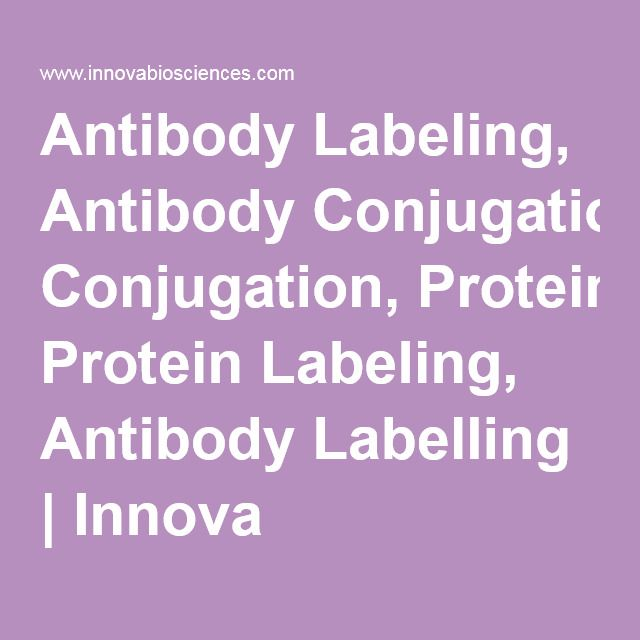 2016- Lightning-Link : Antibody Labeling, Antibody Conjugation, Protein Labeling, Antibody Labelling | Innova Biosciences