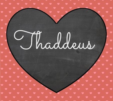 30 Baby Names Inspired By LOVE. #Thaddeus, a distinguished, long-neglected Biblical appellation, has several areas of appeal: a solid New Testament legacy, a nice antique feel, and the choice of several more modern nicknames and international variations--we particularly like the Italian Taddeo. In the Bible, Thaddeus was one of the original Twelve Apostles, and Taddeo Gaddi was a renowned Renaissance painter. I like #Thad as a perfectly on-trend update to 1960s/70s favorites #Todd and #Tad.