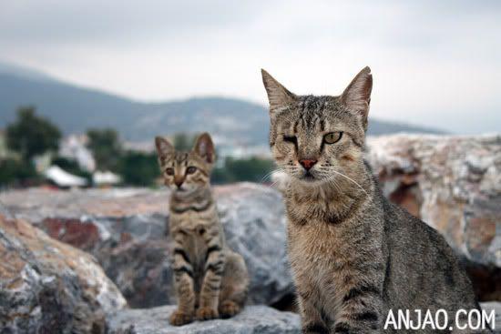 Alanya // Turkey