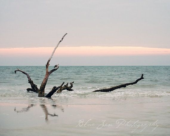 Fine Art Photograph, Driftwood on the Shore of Lido Beach Florida, Ocean, Serenity, Beach Art, Home Decor, Light Blue Tones, 8x10 Print on Etsy, $30.00