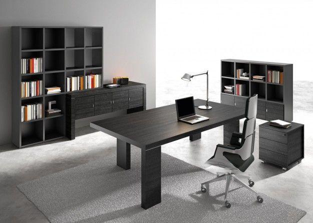 Esta es la oficina. Hay una silla, una alfombra, una mesa, un ordenador, una luz, una mesilla y dos estantes. En la oficina nosotros podemos hacer una búsqueda, hacer los trabajos escolares o navegar en internet.
