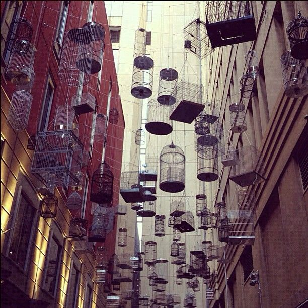 Some lovely hanging birdcages in Angel Place, Sydney CBD @pinkypol