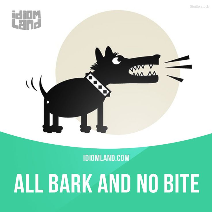 """All bark and no bite"" means ""when someone threatens to do things that they are not really willing or able to do"". Example: That new manager threatened to fire me again, but I know he won't do it. He's all bark and no bite. #idiom #idioms #slang #saying #sayings #phrase #phrases #expression #expressions #english #englishlanguage #learnenglish #studyenglish #language #vocabulary #efl #esl #tesl #tefl #toefl #ielts #toeic #bark #bite"