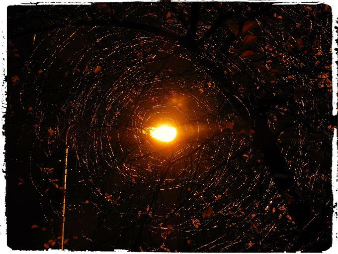 Circles. #poetry #freeimages #freepictures #freephotos #haiku #circle #circles #lamplight #streetlamp #abstract #mystery #abstraction