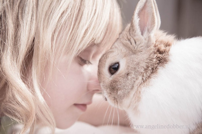 Love - Angeline Dobber Fotografie