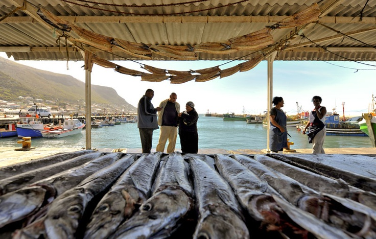 The fish market at Kalk Bay harbour.