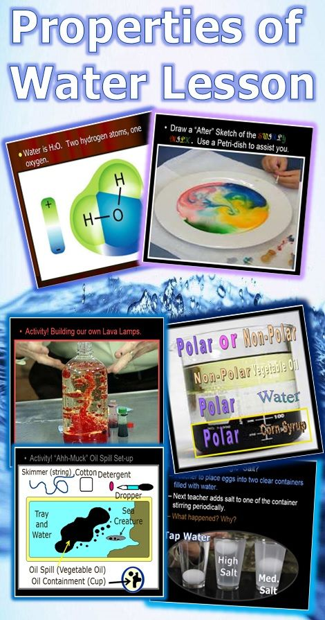 This is a fantastic lesson bundle full of hands-on activities. Students learn about the water molecule and then conduct many easy to run but effective activities. Student learn about adhesion, cohesion, polarity, surface tension, high specific heat, neutral pH, lower density of ice, and much more. Your students will love the activities demonstrations. -Enjoy Science from Murf LLC
