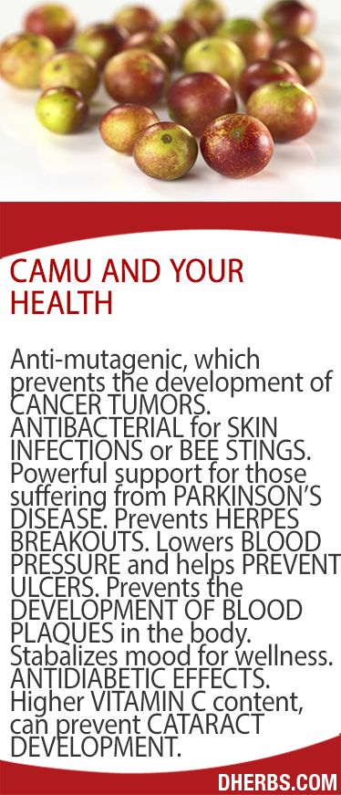 Camu and Your Health