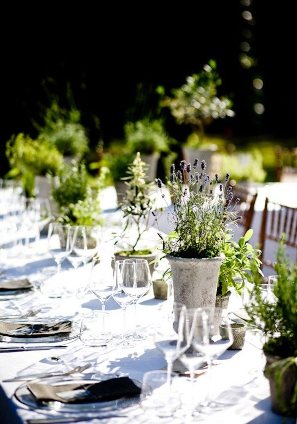 Best ideas about herb centerpieces on pinterest