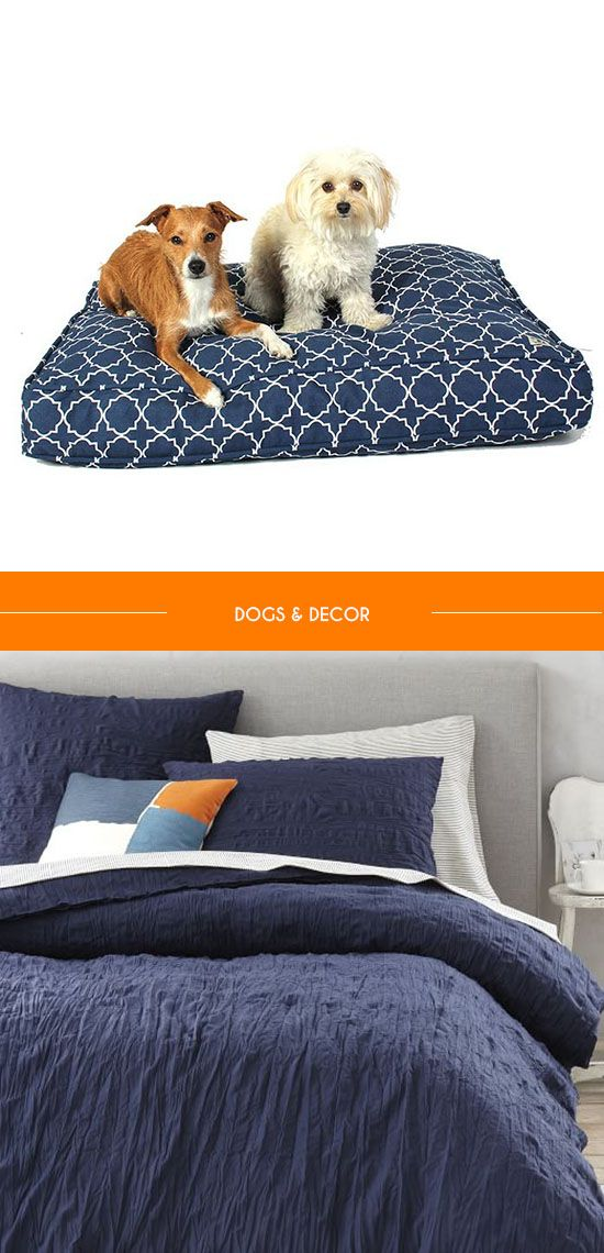 Pictures Of Dog Beds