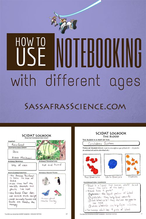 43 best back to homeschool tips images on pinterest homeschool how to use notebooking with different ages fandeluxe Images