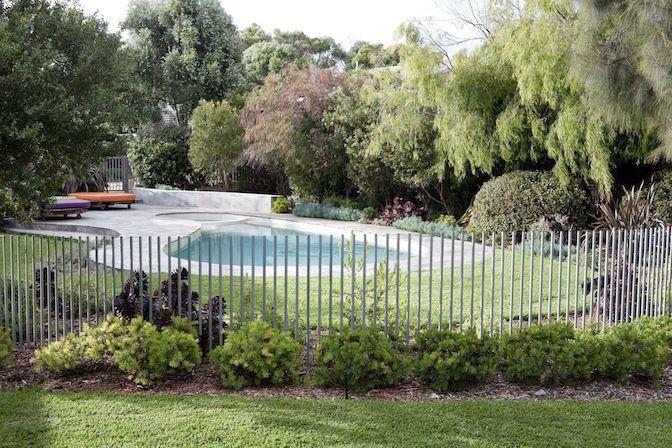 Australian coastal planting surrounding the pool Cloture metal
