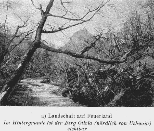 Monte Olivia - Ushuaia