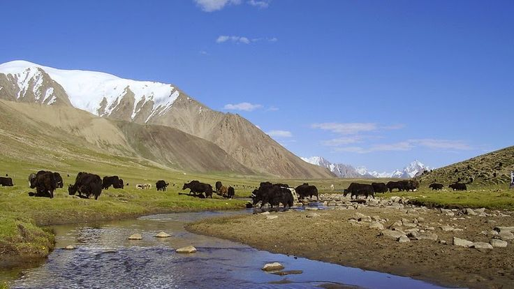 National parks of Pakistan, List of national parks of Pakistan, pictures of…