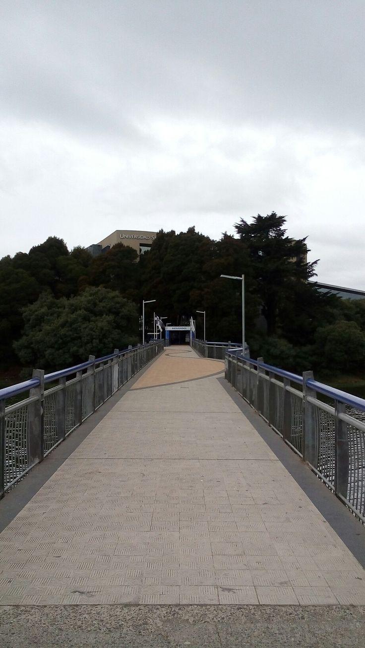 Universidad San Sebastián campus tres pascualas, Concepción. Chile