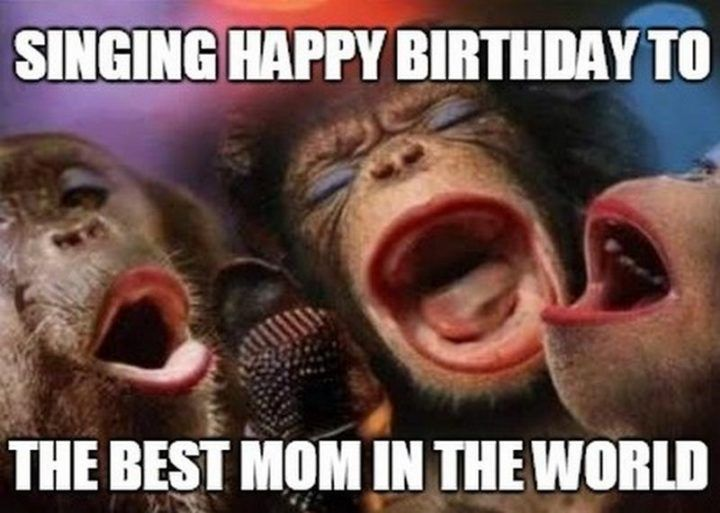 101 Happy Birthday Mom Memes For The Best Mother In The World Happy Birthday Mom Funny Happy Birthday Mom Happy Birthday Mom From Daughter