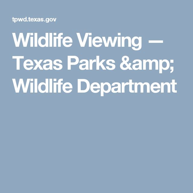 Wildlife Viewing — Texas Parks & Wildlife Department