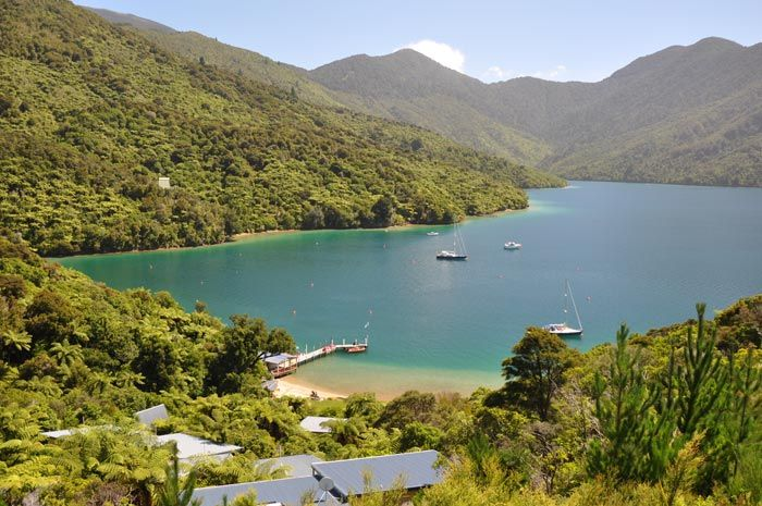 Punga Cove - Accommodation with Stunning Views in the Marlborough Sounds, New Zealand   Gallery