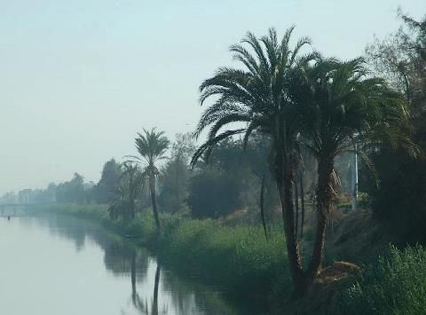 Morning mist on the Nile