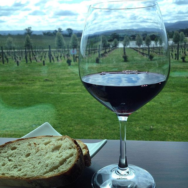 Oakridge Wines - 2012 Baton Rouge. yarravalleylife.com literally drinking in the view. Superbe. #withaview #yarravalley #wine #yarravalleylife