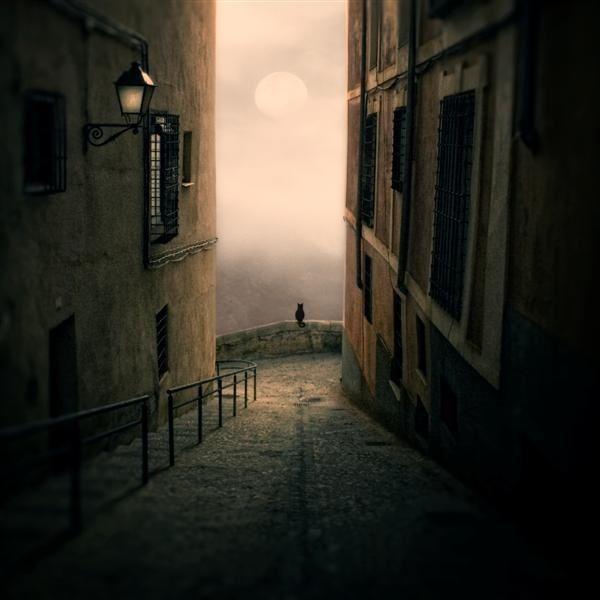 ...: Stunning Photography, Photos Manipulation, Moon, The View, Luis Beltran, Fine Art Photography, Dreams Catchers, Dark Shadows, Black Cat