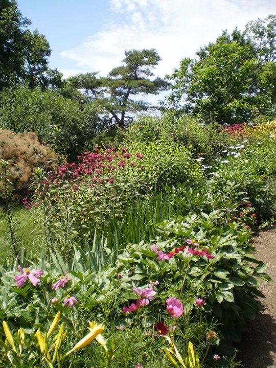 Gardens at Olana ....