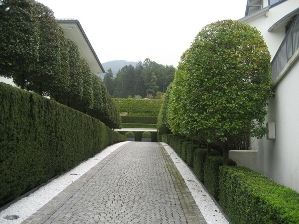 Representative driveway with hedging elements brought forward