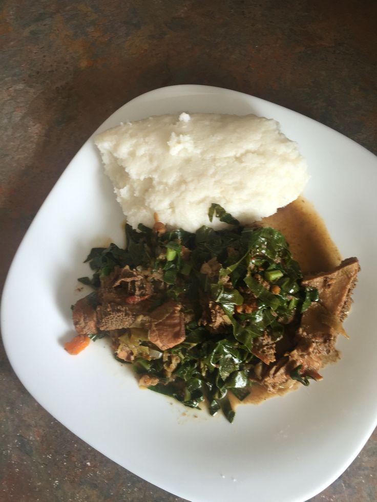 South african food zimbabwe sprouting state and sustenance of sadza nematumbu zimbabwe forumfinder Choice Image