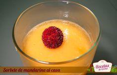 Sorbete de mandarina al cava, una rica receta para las ocasiones especiales. Puedes tomarlo antes de la carne o acompañando a un postre, mejor de chocolate
