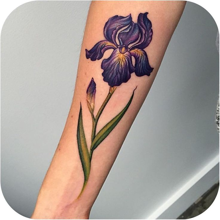 """Iris made by @lazerliz #tattoodo"""