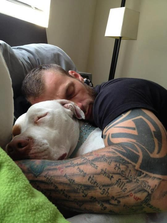 What's not to love about this photo?! A muscular guy snuggling a pit bull ❤️