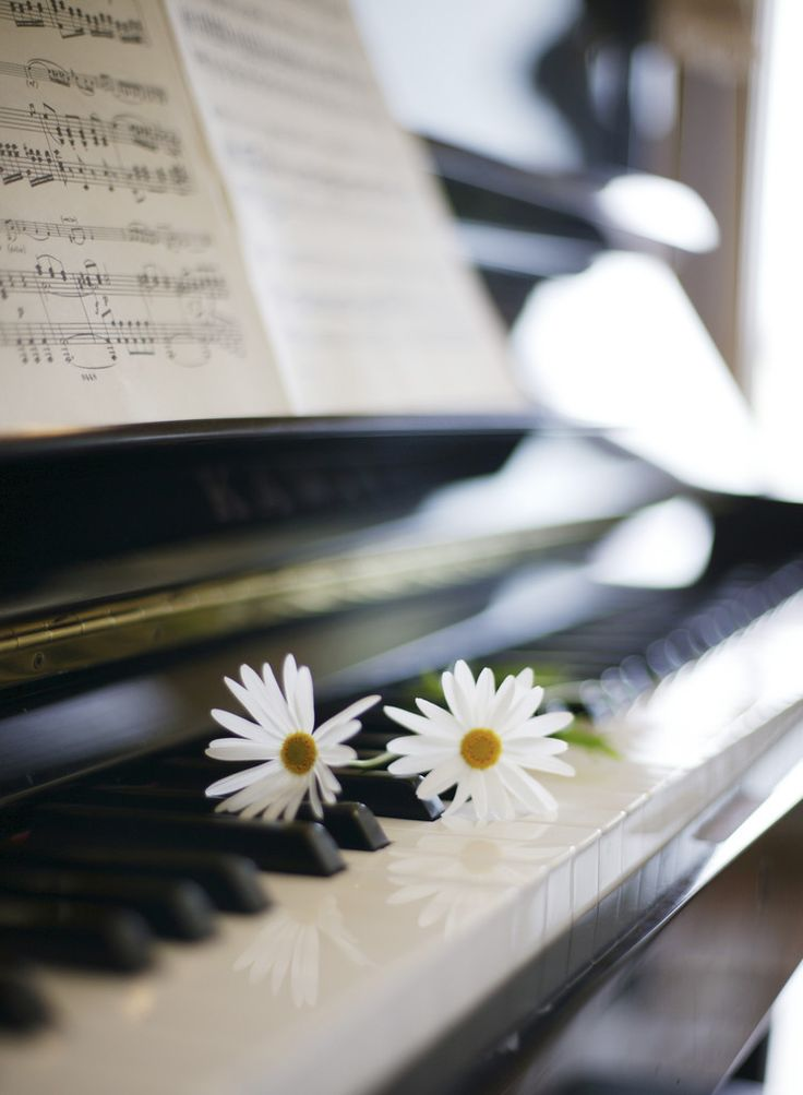 The days only get better with the spring and summer flowers start to grow! #grand #piano #daisies