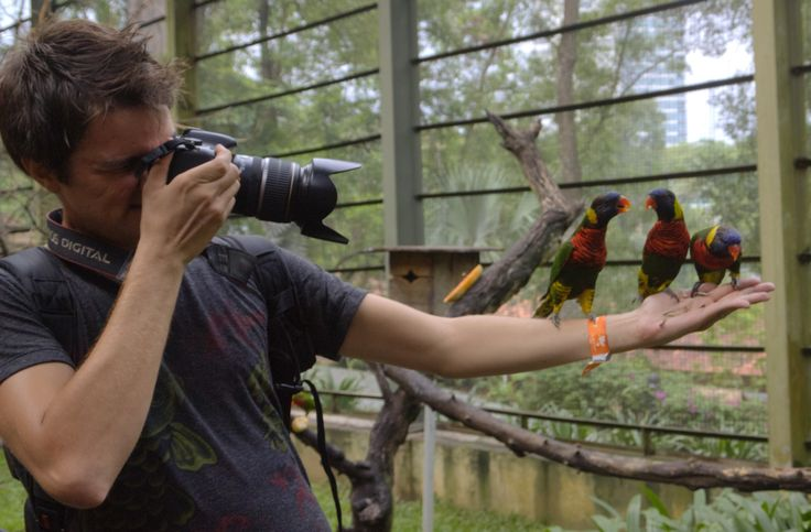 In case you haven't noticed, I went to a bird park today in Kuala Lumpur!