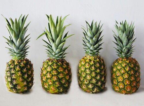 Pineapples :D
