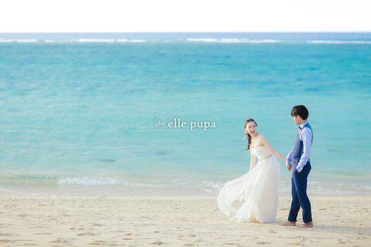 出版記念キャンペーンのお知らせ* |*elle pupa blog*