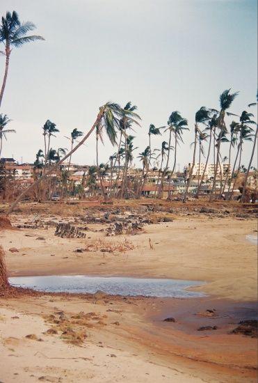 beach hurricane iniki hawaii kauai