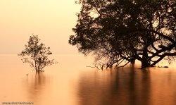 Фотографии Таиланда - Ко Чанг