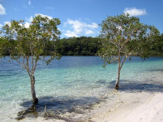 Lake Mackenzie, Fraser Island - Australia.