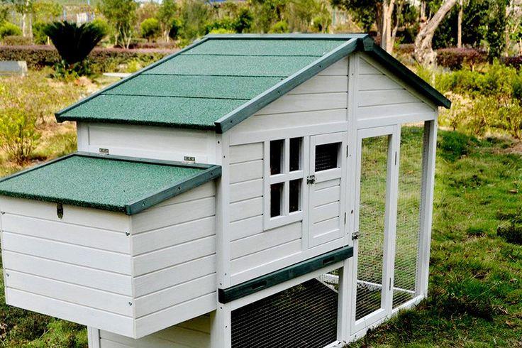 -The California Grey Villa 4-5 Chickens-