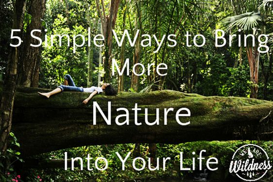 5 Simple Ways to Bring More Nature Into your Life Please click the image to read our blog :)