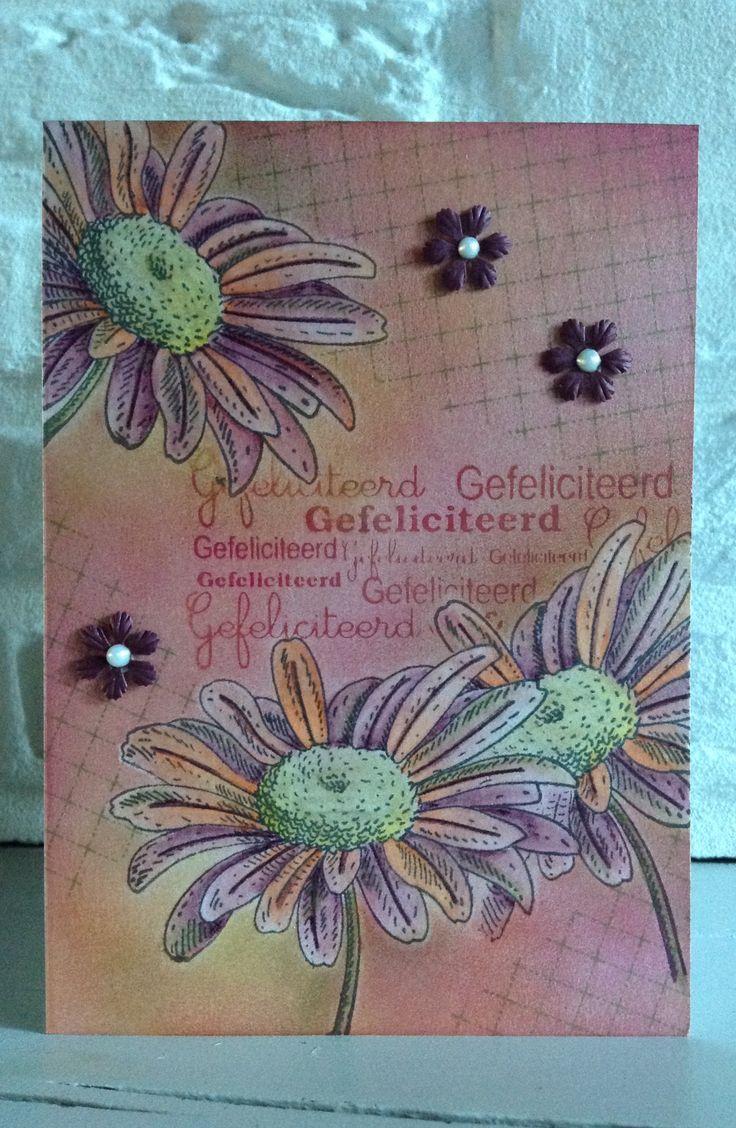 """CB. Stempel v PB """"Graceful""""4313J ingekleurd met Coloursoft Derwent kleurpotloden-Gefeliciteerd v DC-bloemenpunch Nellie Snellen-achtergrond Pan Pastels"""