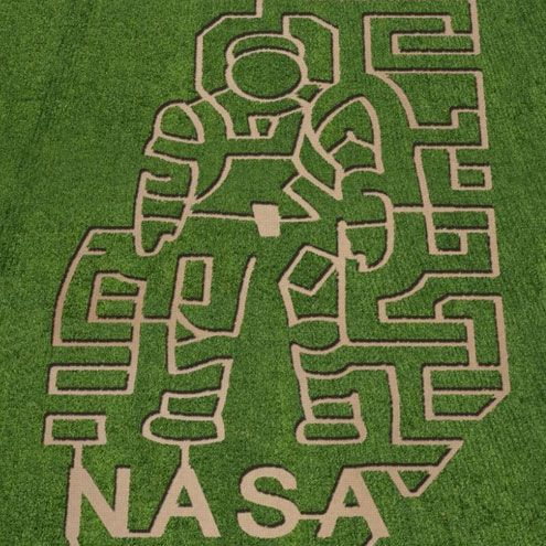 corn mazes NASA