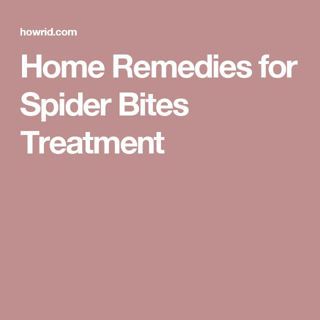 Home Remedies for Spider Bites Treatment