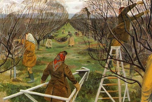 Pastoral, Land Girls Pruning at East Malling (Detail), 1944 by Evelyn Dunbar.