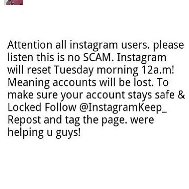 #webstagram just for instagram users