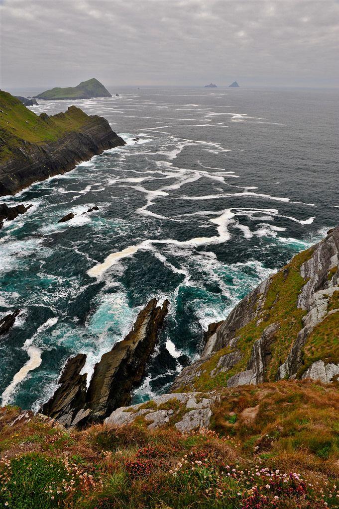 Skellig Islands, Kerry, Ireland by jean-marc losey. ( via Wander the wood )